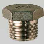 SS 310/310S Threaded Plug
