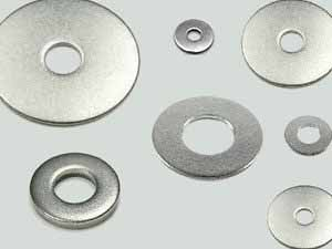 SS 317l Washers