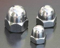 Duplex & Super Duplex Dome Nut