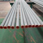 Duplex S31803 / S32205 Seamless Tubes