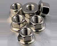 Hastelloy Hex Head Nut