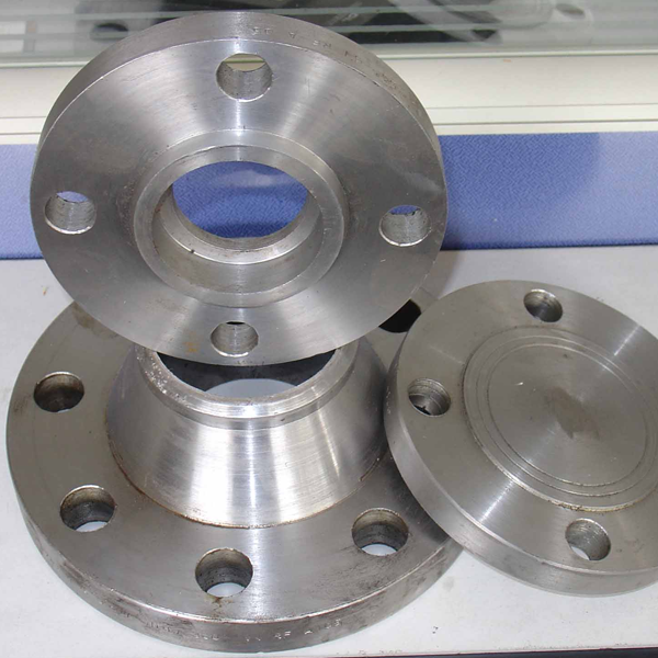 304L SS Pipe Flanges
