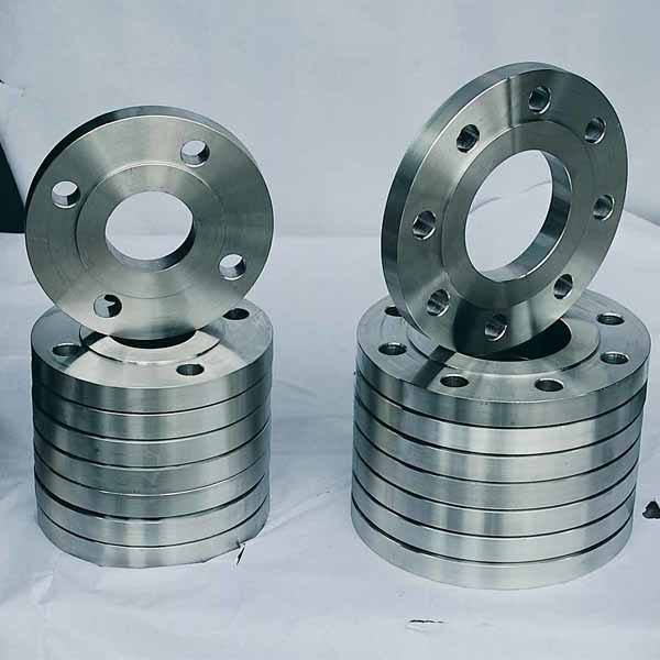 310 / 310S SS Pipe Flanges